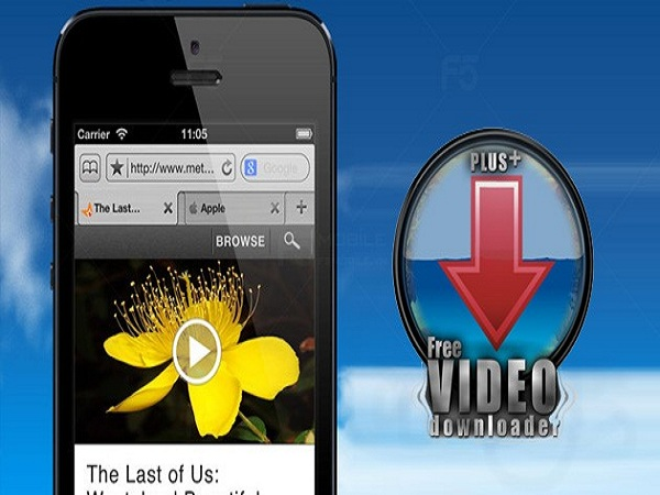 Cách tải video về iphone bằng app Free Video Downloader Plus