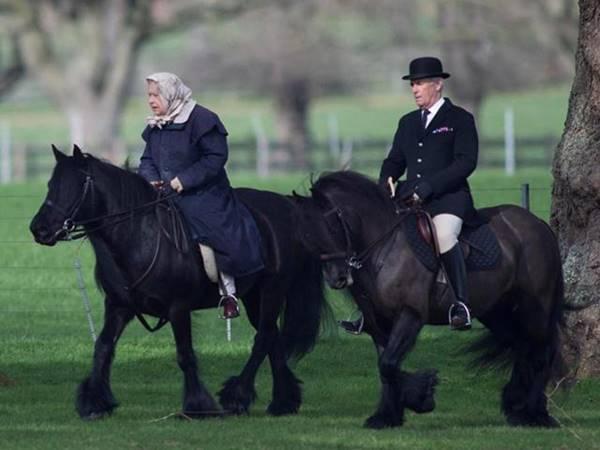 Ý nghĩa của giấc mơ thấy cưỡi ngựa là điềm báo gì?