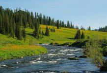 Mơ thấy dòng sông là điềm báo điều gì?