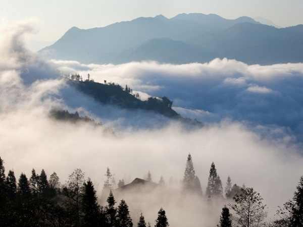 Mơ thấy sương mù là điềm báo lành hay dữ?